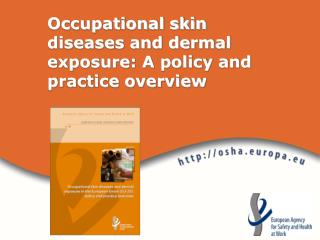 Occupational skin diseases and dermal exposure: A policy and practice overview