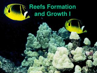 Reefs Formation  and Growth I