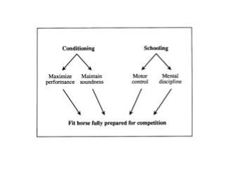 Conditioning Programs are Directed Towards: