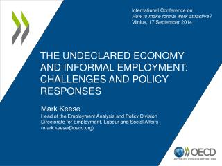 the undeclared  economy and informal employment: challenges and policy responses