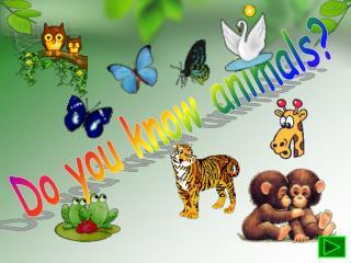 Do you know animals?