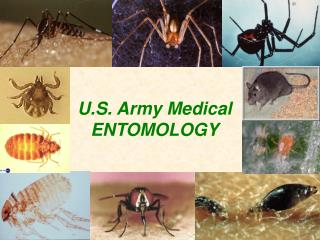 U.S. Army Medical ENTOMOLOGY