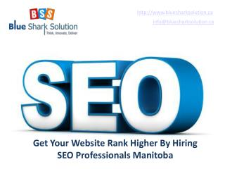 Get your website rank higher by hiring SEO professionals