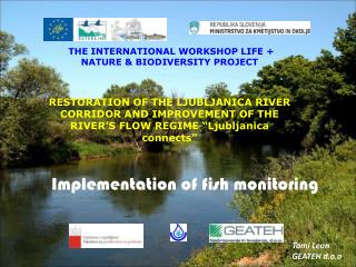 Implementation of fish monitoring