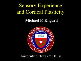 Sensory Experience  and Cortical Plasticity