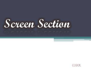 Screen Section