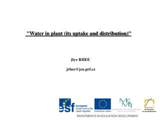 """""""Water in plant (its uptake and distribution)"""""""