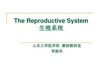 The Reproductive System  生殖系统