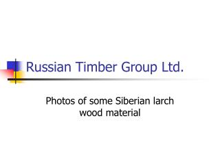 Russian Timber Group Ltd.