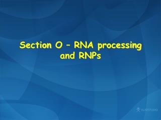 Section  O – RNA processing and RNPs