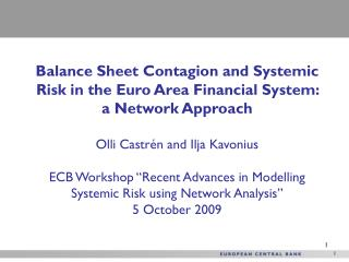 Balance Sheet Contagion and Systemic Risk in the Euro Area Financial System: a Network Approach