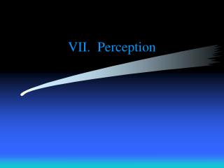 VII. Perception