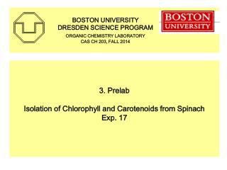 3. Prelab Isolation of Chlorophyll and Carotenoids from Spinach  Exp. 17