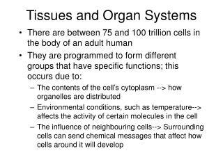 Tissues and Organ Systems