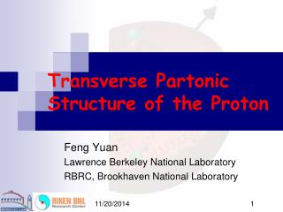 Transverse Partonic Structure of the Proton