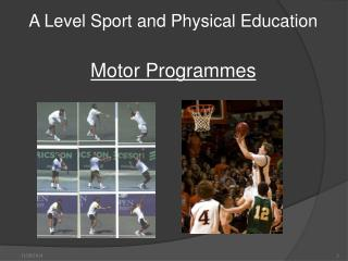 A Level Sport and Physical Education Motor Programmes