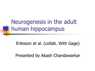Neurogenesis in the adult human hippocampus