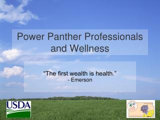 Power Panther Professionals and Wellness