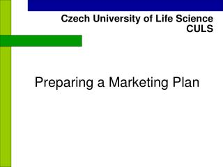 Preparing a Marketing Plan