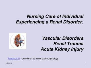 Renal A & P   -excellent site- renal pathophysiology