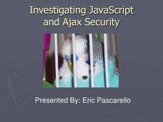 Investigating JavaScript  and Ajax Security