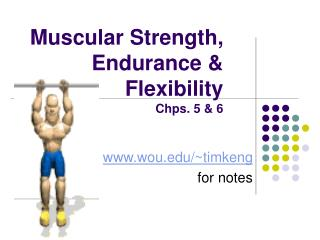 Muscular Strength, Endurance & Flexibility Chps. 5 & 6