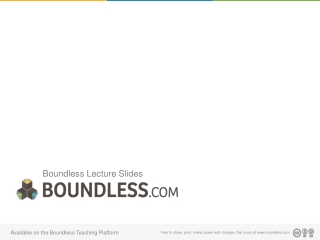 Boundless Lecture Slides