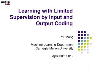 Learning with Limited Supervision by Input and Output Coding
