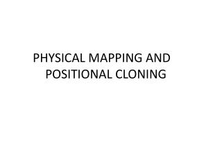 PHYSICAL MAPPING AND POSITIONAL CLONING