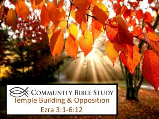 Temple Building & Opposition Ezra 3:1-6:12