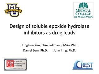 Design of soluble epoxide hydrolase inhibitors as drug leads