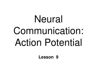 Neural Communication:  Action Potential