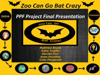 PPF Project Final Presentation