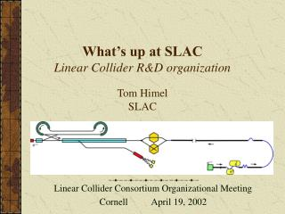 What's up at SLAC  Linear Collider R&D organization Tom Himel SLAC