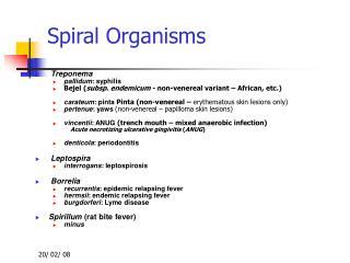 Spiral Organisms