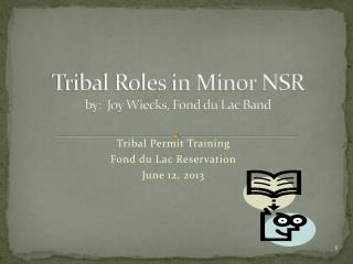 Tribal Roles in Minor NSR by:  Joy Wiecks, Fond du Lac Band