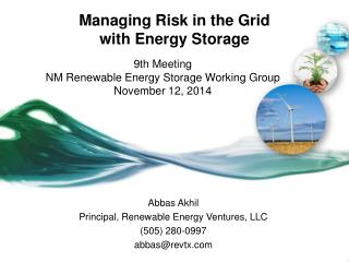 Managing Risk in the Grid with Energy Storage