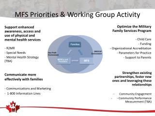 MFS Priorities & Working Group Activity