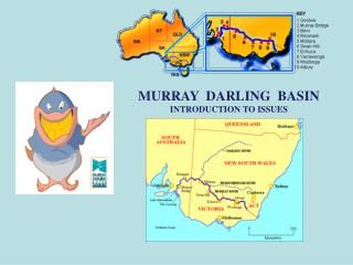 MURRAY  DARLING  BASIN  INTRODUCTION TO ISSUES