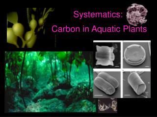 Systematics: Carbon in Aquatic Plants