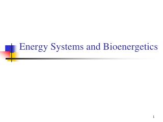Energy Systems and Bioenergetics