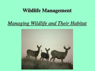 Wildlife Management Managing Wildlife and Their Habitat