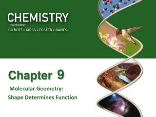 Molecular Geometry:   Shape Determines Function