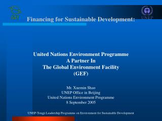 Financing for Sustainable Development: United Nations Environment Programme