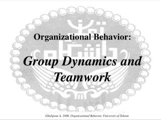 Organizational Behavior: Group Dynamics and Teamwork