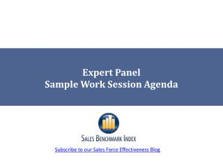 Expert Panel Sample Work Session Agenda