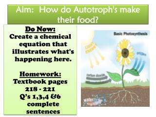 Aim:  How do Autotroph's make their food?