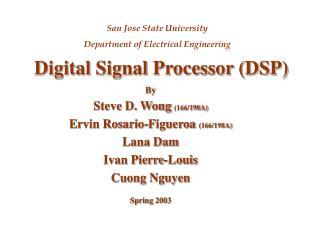 Digital Signal Processor (DSP)
