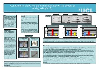 A comparison of dry, live and combination diet on the efficacy of raising zebrafish fry