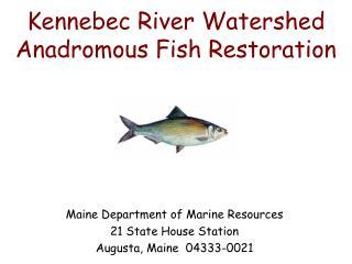 Kennebec River Watershed   Anadromous Fish Restoration